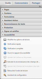 Figure - menu Accessibilité